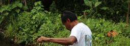 visite de la Laguna isla Paicawe